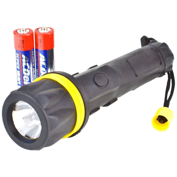 Flashlight and Batteries